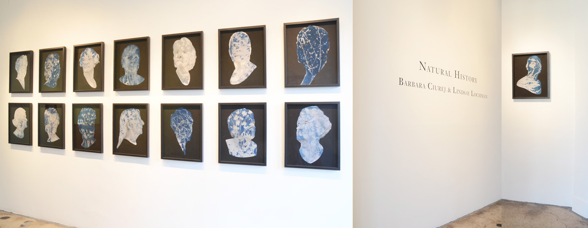Portrait Society installation